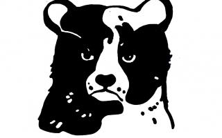 grumpy-bear-06_klein